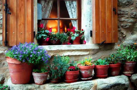 INNES window_pots_provence