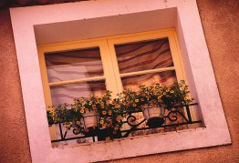 INNES yellow window